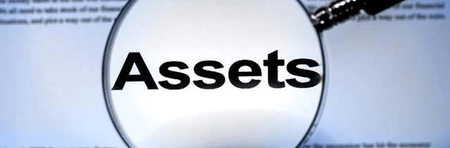 Asset Protection Image